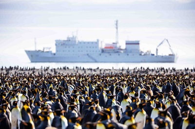 Antarctica Penguins and Ship